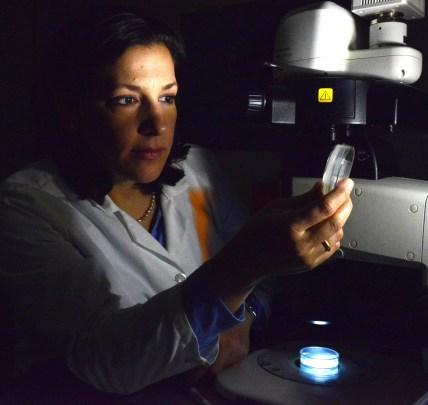 Dr. Valeria Vasquez C
