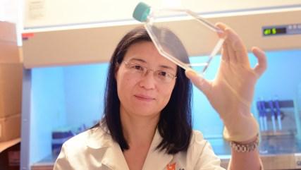 Dr. Meiyun Fan