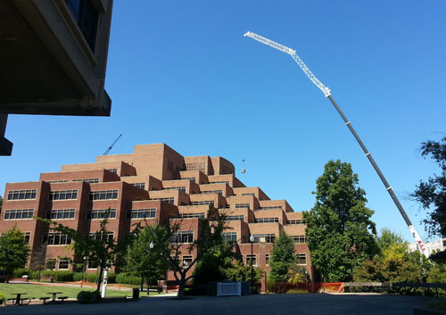 A crane lifts construction materials to the roof of Hodges Library