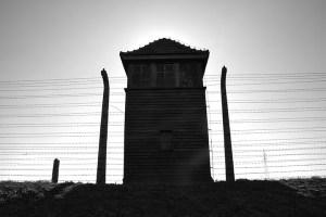 Auschwitz-11