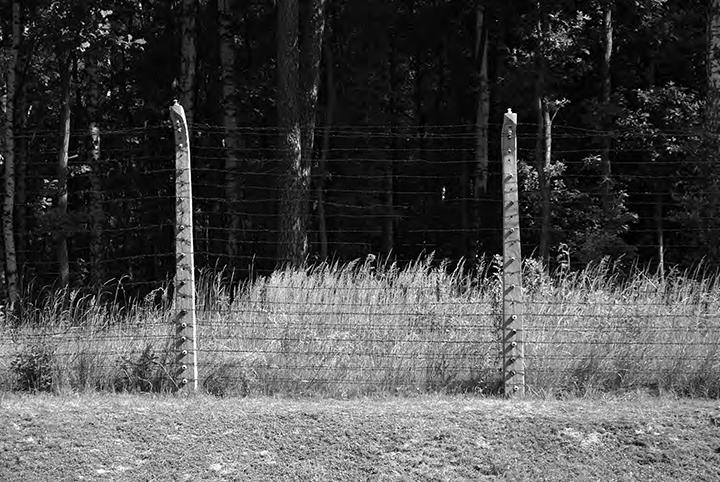 Auschwitz-5