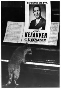 kefauver3