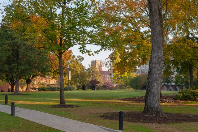 Ayres Hall seen through the trees of Circle Park. Photo by Tom Schirtz.