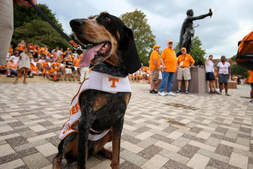 KNOXVILLE, TN - 2016.09.01 Football Tennessee vs. Appalachian State