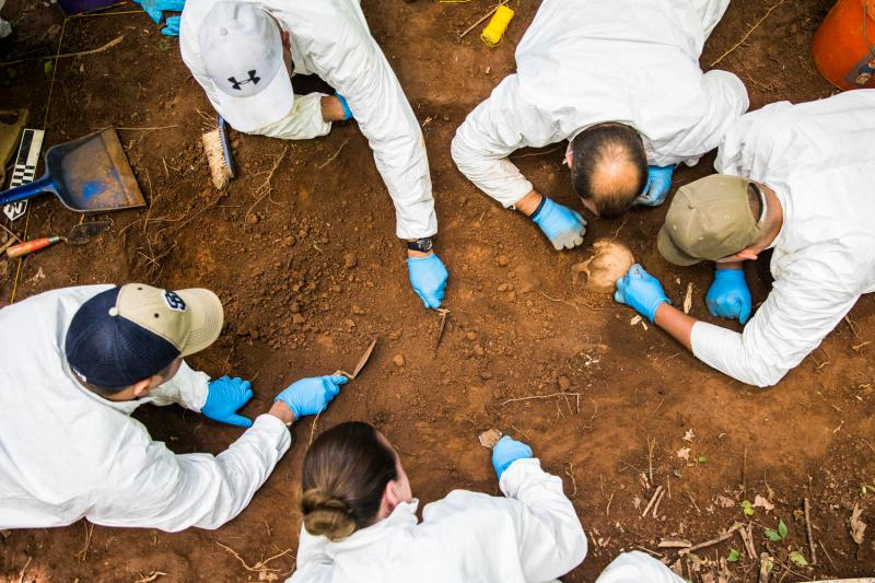 Law enforcement officers work on a burial excavation