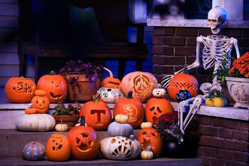 20191024_Carved_Pumpkins_010_1500