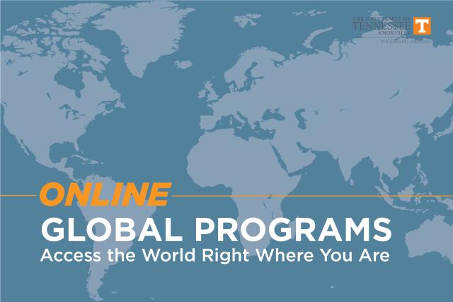 online-global-program-05