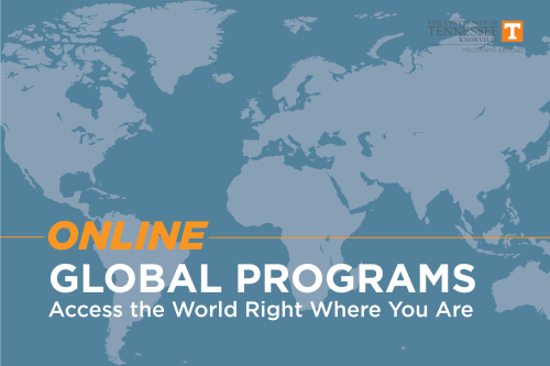 online-global-program-05