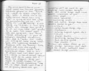 Copy-of-diary1-1-hgary