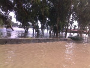 Standing floodwater in Pakistan | Image courtesy of Tauseef Mutwahir