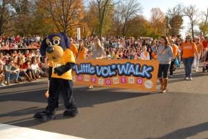 Little-Vol-Walk
