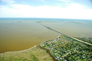 """Aerial view of HAB """"brown tide"""" 