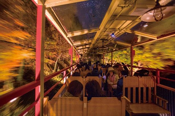 ライトアップもあり!京都のレトロな嵯峨野トロッコ列車で絶景モミジを | NewsWalker