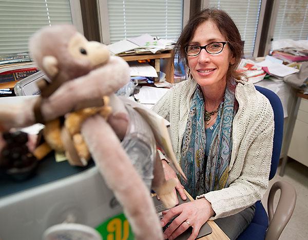 Karen Strier is elected president of International Primatological Society