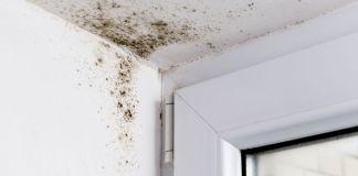 Bauschäden können durch Fensterdichtungsbänder verringet werden. Foto: Würth