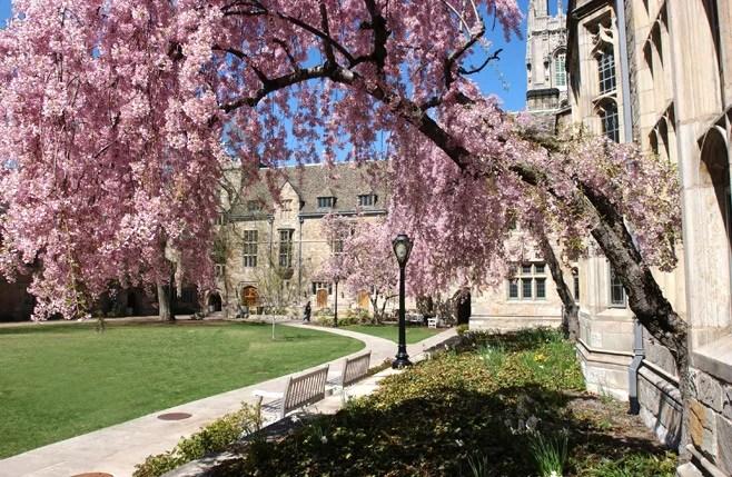 Images of the Yale Campus  YaleNews