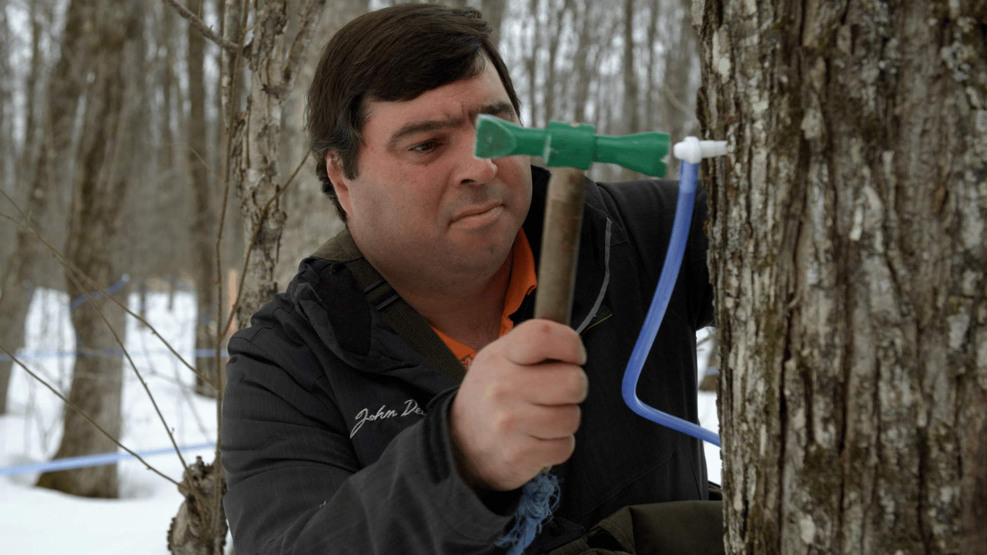 Inside Quebecs maple syrup cartel  VICE News