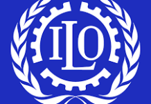 Job Vacancy At International Labour Organization