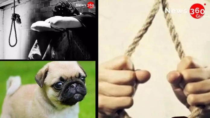 16 Years Old Commits Suicide For Not Buying Puppy In Visakpatnam