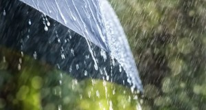 Rainfall in Western Cape