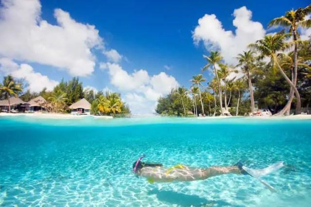 Snorkeling in Zanzibar