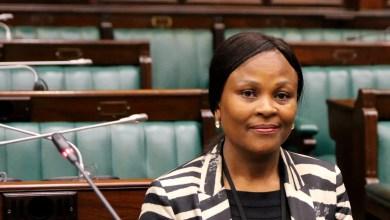 Public Protector Mkhwebane
