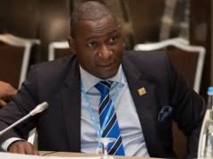 Zimbabwe ex-minister Supa Mandiwanzira
