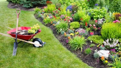 Photo of Gardening jobs available – Apply Now