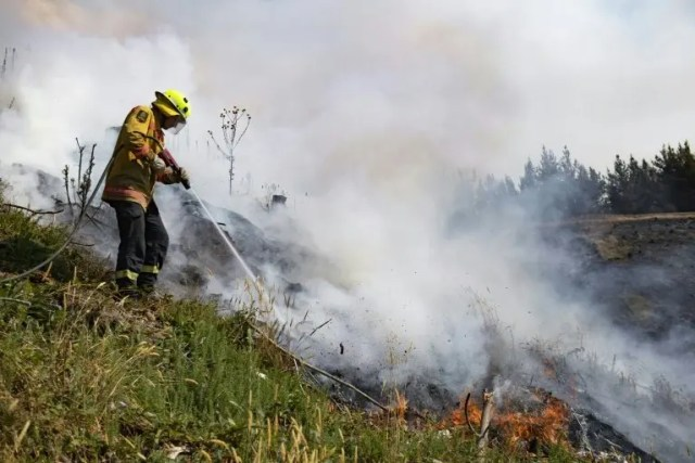 New Zealand wildfire