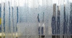 steamed windows