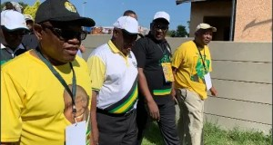 ANC leads in Gauteng