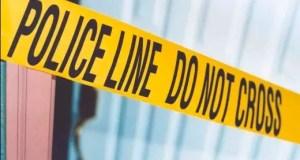 Woman kills grandson