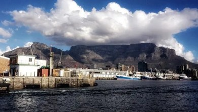 Photo of City to tackle Table Mountain attacks