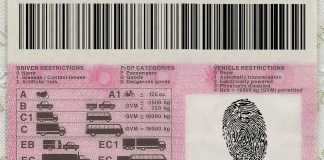 Driver's Licence Fraud
