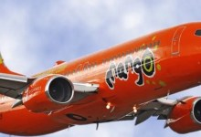 Mango flight