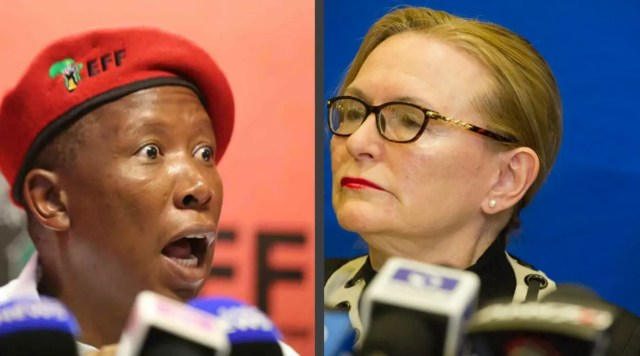 Helen Zille and Julius Malema