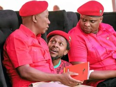 Julius Malema and Mbuyiseni Ndlozi