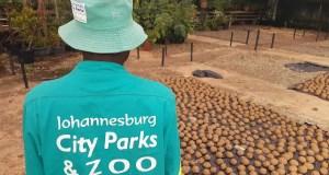 Johannesburg City Parks and Zoo (JCPZ)