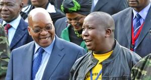 Julius Malema and Jacob Zuma