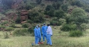 Pathologists next to one of the bodies, found next to the bushes