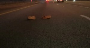 Pedestrian crushed by truck