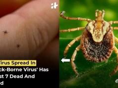 Tick Virus