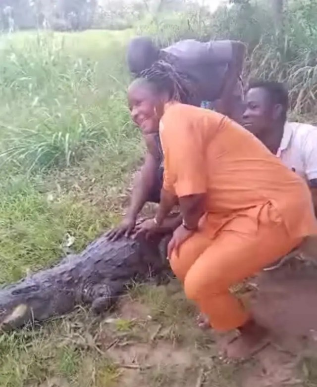 woman attacked by crocodile
