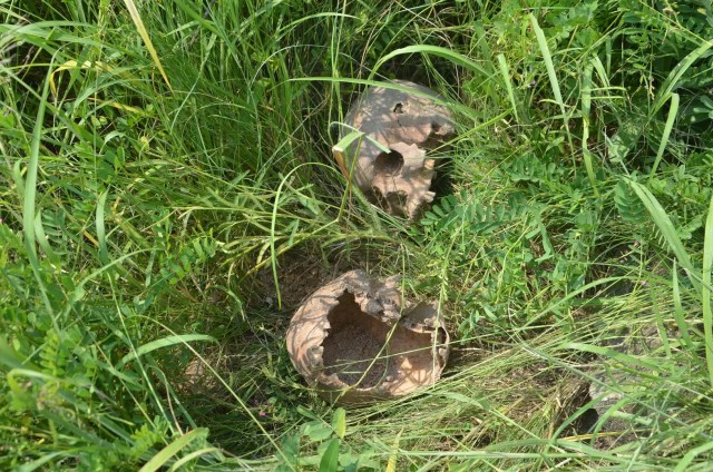 Shock as 2 different families discover human remains while digging new graves for their dead members