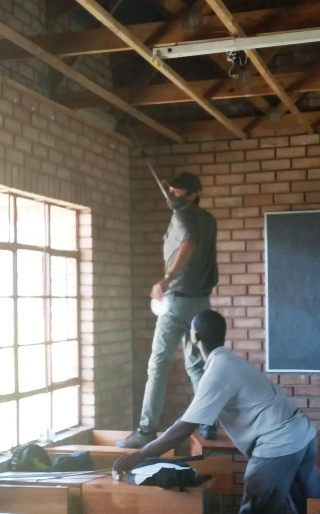 Black mamba in the classroom causes panic