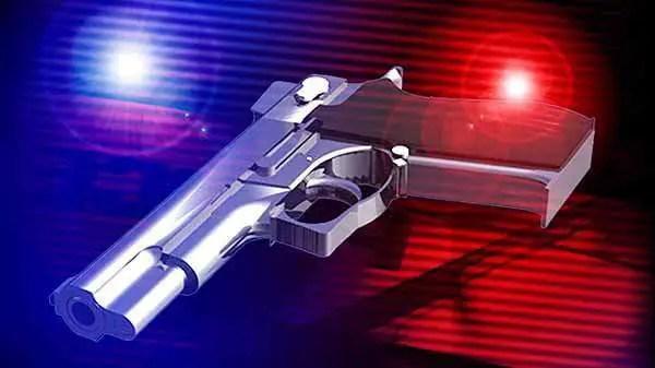 Calls for increased gun ownership after EC farmer killed