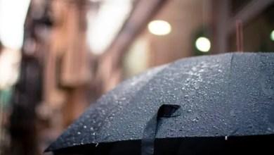 rainfall Thundershowers