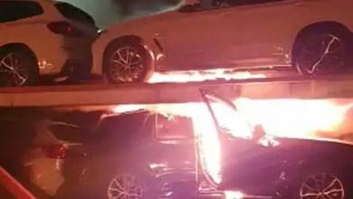 Free Jacob Zuma protests take fiery turn as 25 trucks burnt in KZN