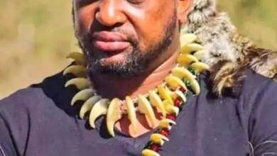 MisuZulu KaZwelithini