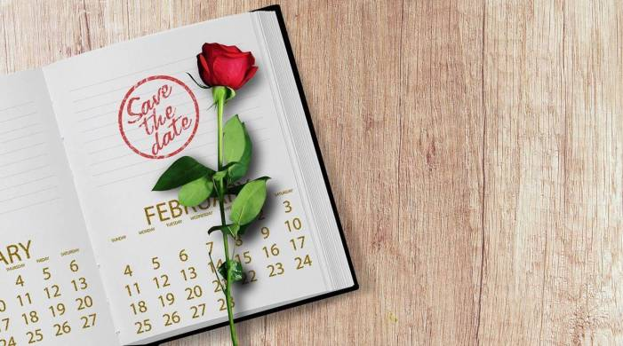 Calendar, Date Sheet of Rose, Propose, Chocolate, Promise, Teddy, Hug and Kiss Day
